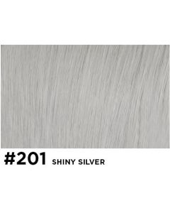 Double True Kleurstaal 201 Shiny Silver